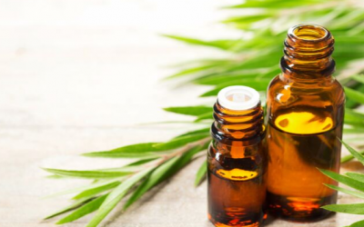 Does Tea Tree oil treat fungal nails?